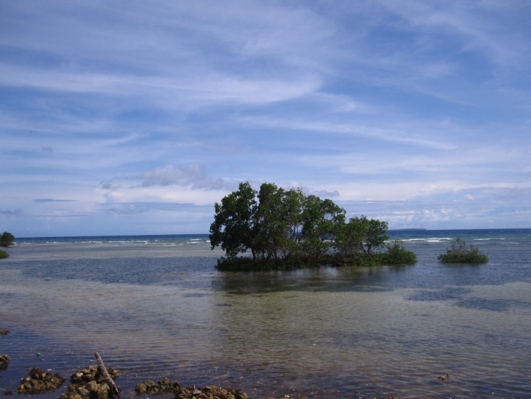 Water in Bohol