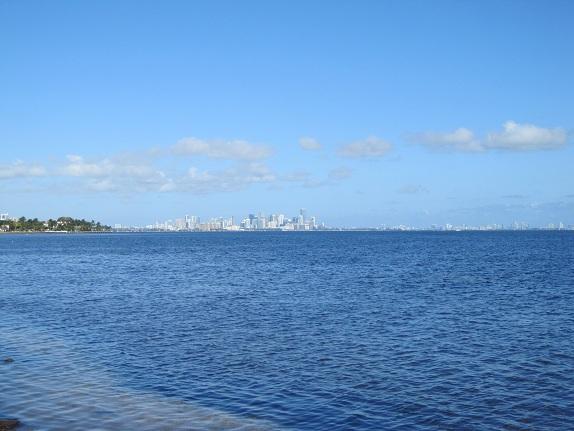 View of Downtown Miami