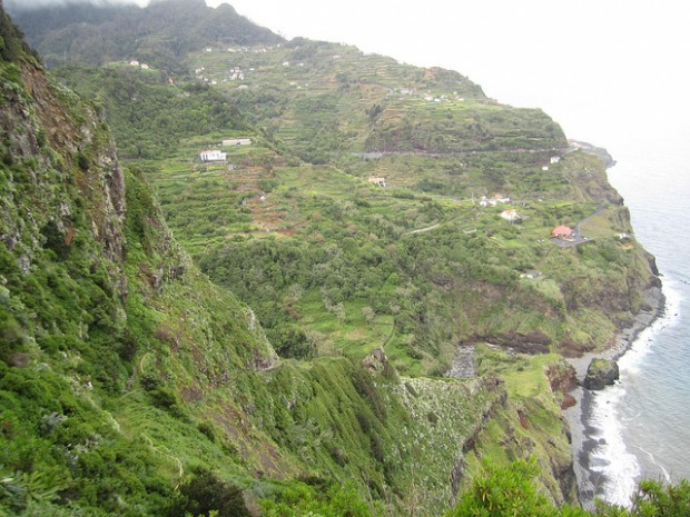 green cliffs in Madeira