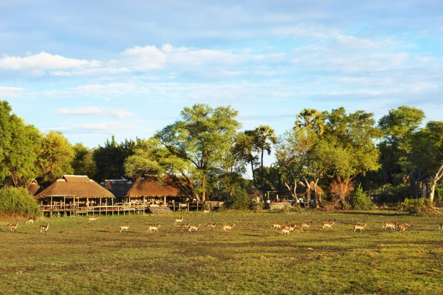 camps in Botswana, Africa.