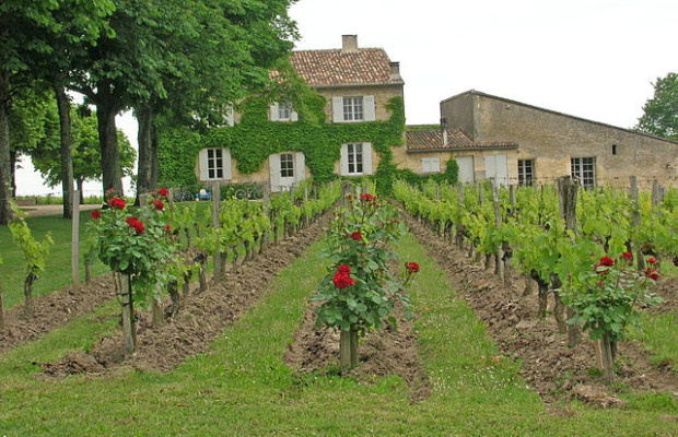 one of the best wineries in Europe